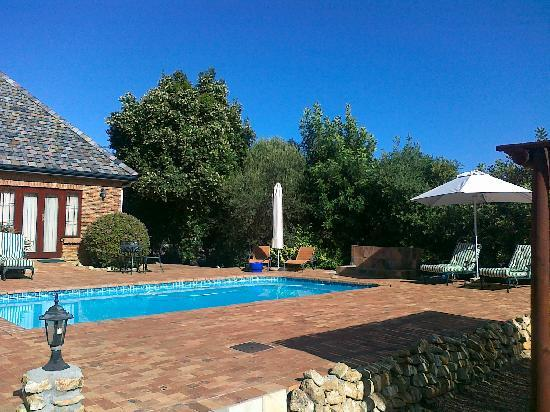 Cape Country Living Guesthouse: Blick vom Eingang Richtung Pool
