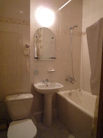 Derzhavnaya Hotel : Standart room