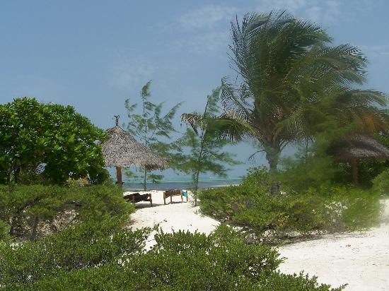 Hakuna Majiwe Beach Lodge: vista dal bungalow