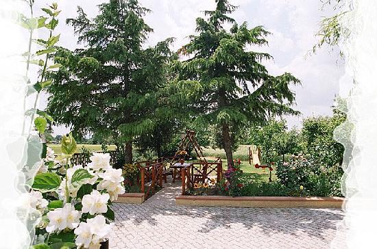 Camere Mariella: Il nostro giardino