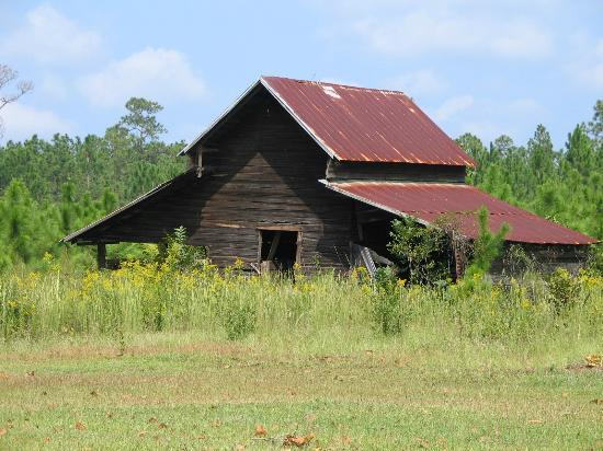 An old barn in a rural setting outside of Jesup