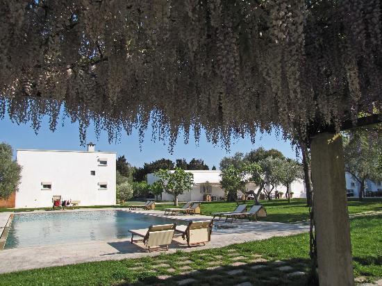 Masseria Montelauro: gardens and pool area