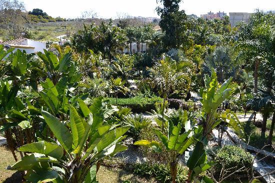 Tarifa y horario fotograf a de jard n bot nico molino de for Jardin botanico tarifas