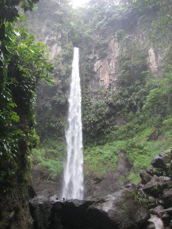 Large falls in eastern Dominica - Courtesy of media-cdn.tripadvisor.com