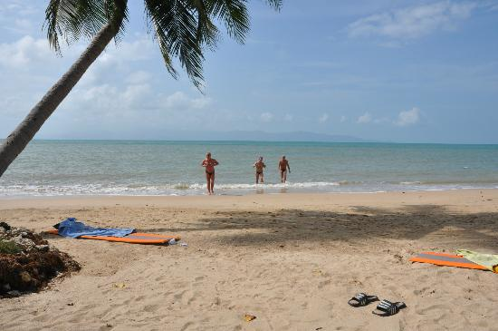 Thong Yang Bungalows : beach
