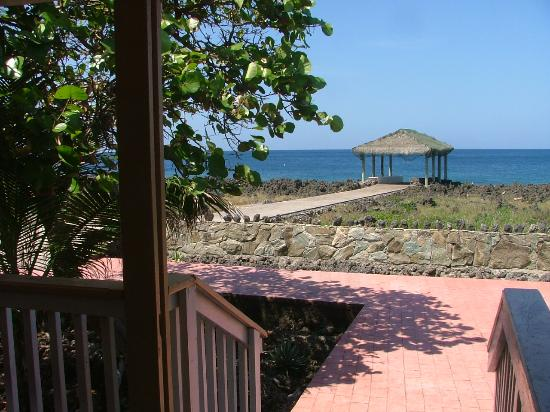 Seagrape Plantation Resort: Sea view from the bungalow