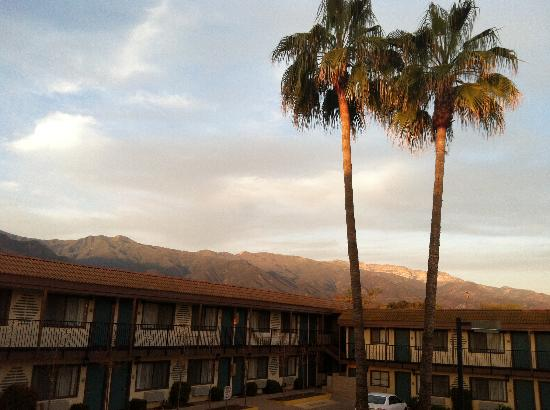 Casa Ojai Inn: morning view from room 222