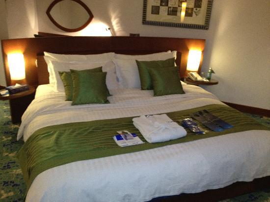 Radisson Blu Hotel, Riyadh : Kind Deluxe room