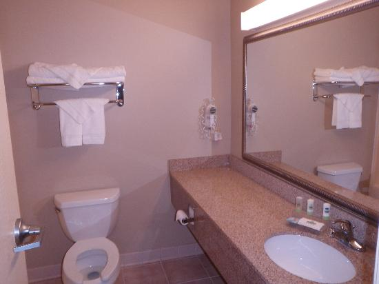 Country Inn & Suites by Radisson, Rock Falls, IL: Bathroom
