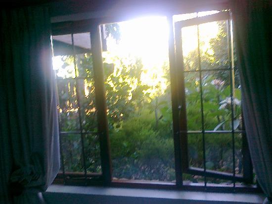 Cape Country Living Guesthouse: Blick aus einem der Haupthaus Zimmer