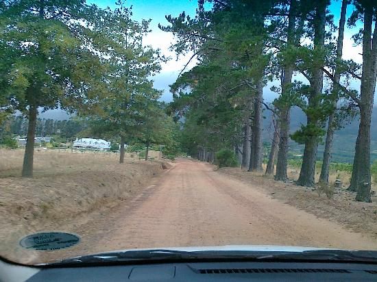 Cape Country Living Guesthouse: Dirt Road runter zum Gate