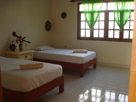 Beachouse Dive Hostel Cozumel: 2 Single bed room