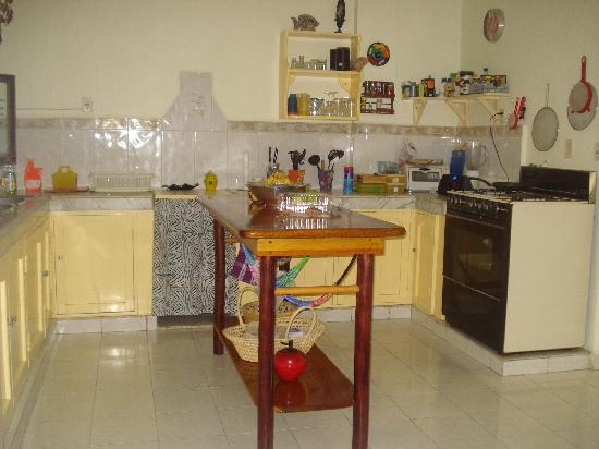 Beachouse Dive Hostel Cozumel: Share Kitchen