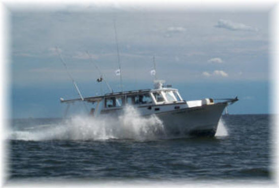 Stormy petrel charters deale md top tips before you go for Deale md fishing charters