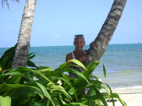 Decameron Marazul : isla