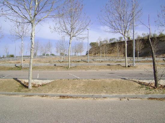 Parque Arqueologico de Carranque : Parque arqueológico de Carranque, Toledo.