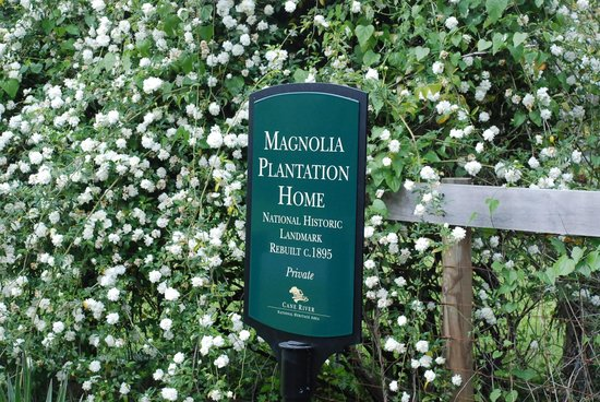 Cane River Creole National Historical Park: Magnolia Plantation Sign at Entrance