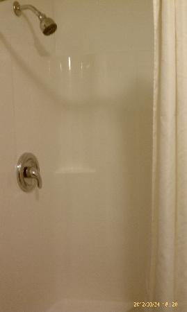 Country Hearth Inn and Suites Delmar : Shower