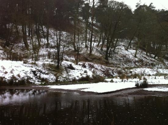 Ogden Water Country Park & Nature Reserve: winter at Ogden