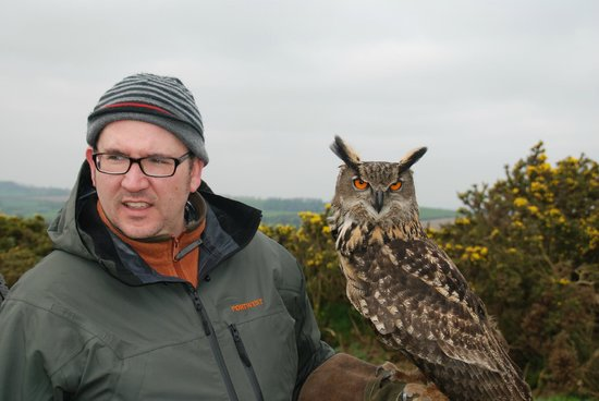 Julianstown, Irlanda: Bo the Eagle Owl