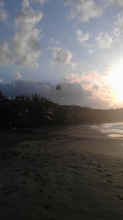 Mango Sunset: Sunset at Mangos