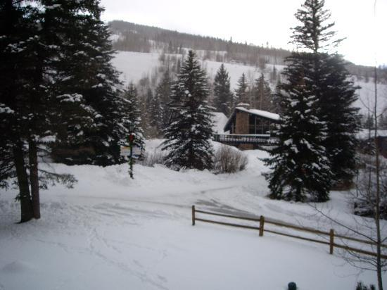 Tivoli Lodge: room view