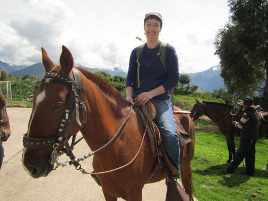Apupacha Horse Adventure : The real thing- Peruvian Paso horse
