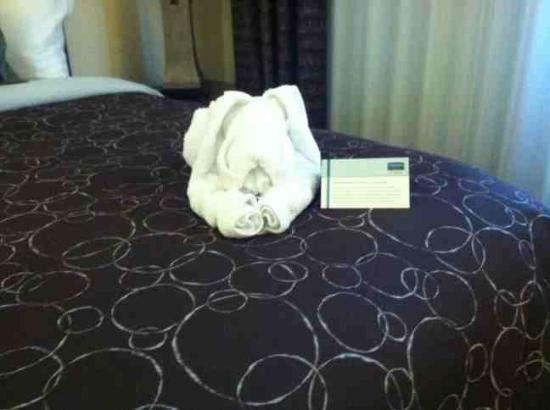 Staybridge Suites Austin NW: Towel Puppy