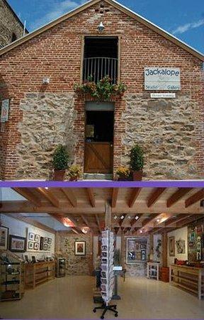 Jackalope Studio Gallery