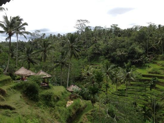 Seminyak, Indonesia: more photos