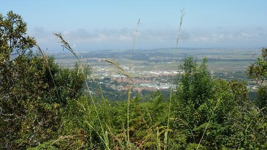 Clair Garden: uitzicht uit het treintje