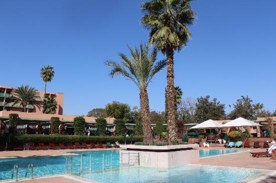 Golden Tulip Farah Marrakech: la piscine