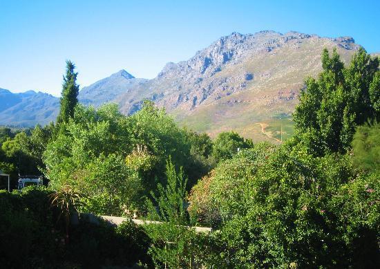 Keren's Vine: Blick von der Terrasse