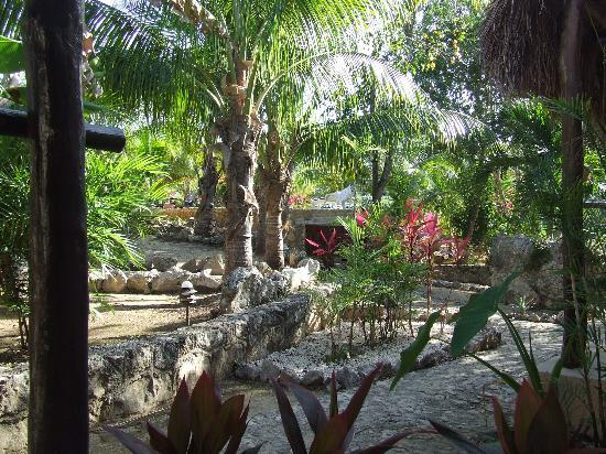 Itour Akumal Villas Tortugas: The garden