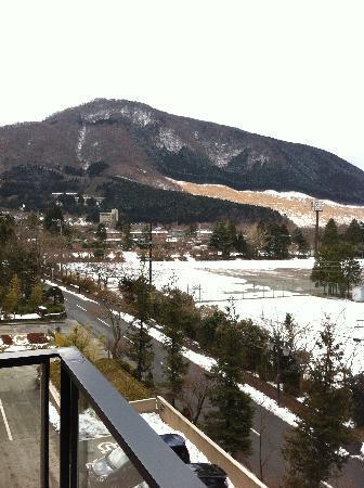 Hotel Harvest Hakone Koshien: 部屋のベランダから