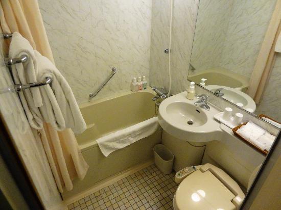 Kawasaki Nikko Hotel: 洗面と風呂