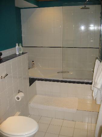 Gurney Manor Mill: Bathroom looking one way