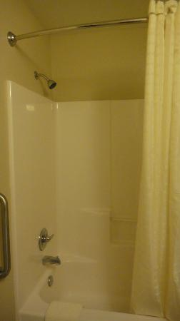 Candlewood Suites - Houston Park Row: Shower
