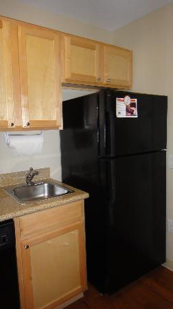 Candlewood Suites - Houston Park Row: Full size fridge