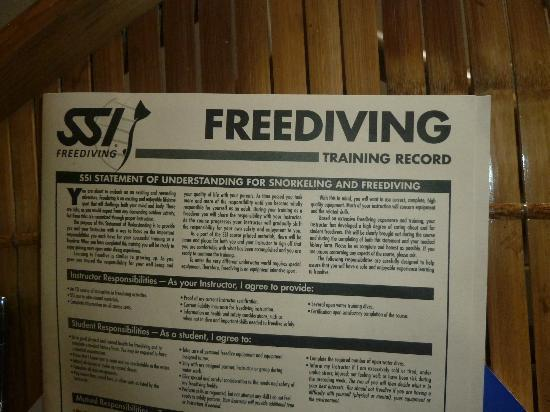Element Freedive: Fill in the paperwork!