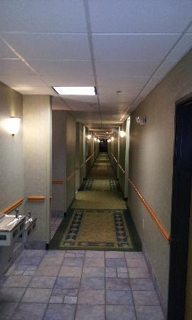 Comfort Suites: hallway on first floor