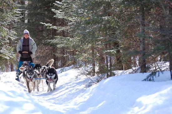 Saint Aime Des Lacs, Kanada: Chantale, propriétaire et guide en traîneau