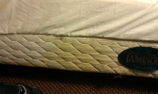 Paddlers Inn: urine stains on mattress