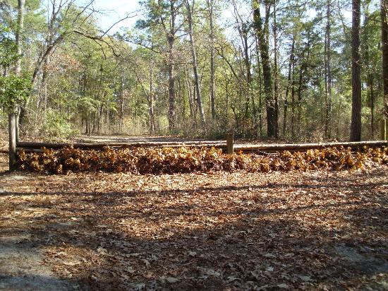 Hitchcock Woods: Equestrian trails