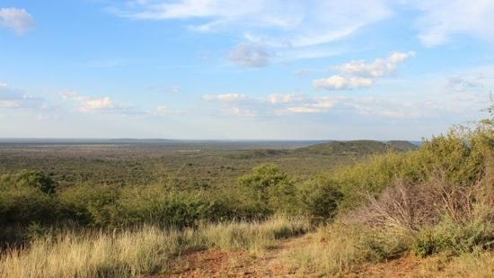 Thakadu River Camp: View on game drive