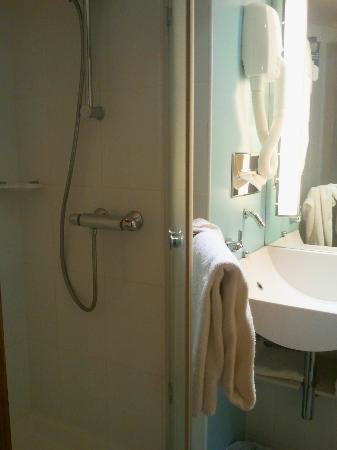 Novotel Toulouse Centre Compans Caffarelli: Salle de bain - Douche