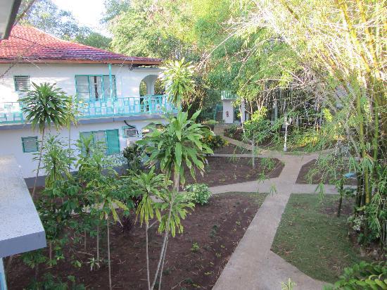 Coral Seas Garden: gardens