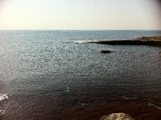 Best Western Hotel Paradou Mediterranee: la plage