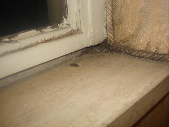 Hotel Villa Florence: dust on the window ledge