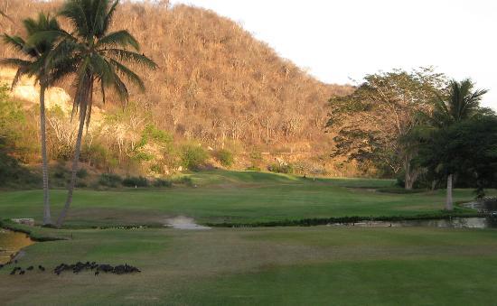 Campo de Golf Tangolunda: Looking back to 18th tee over landing area